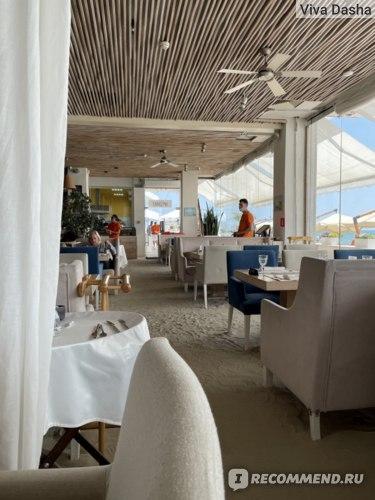 Ресторан Санремо Сочи отзыв фото
