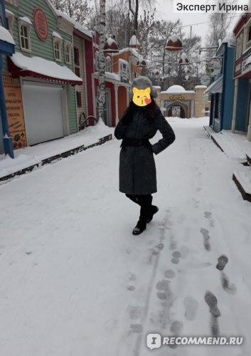 Горьковский парк зимой