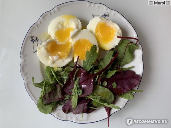 Белковая диета фото