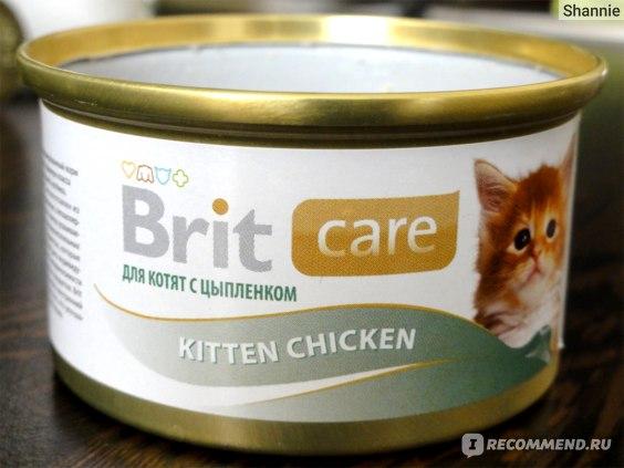 Корм для кошек Brit Care Kitten Chicken с цыпленком для котят фото