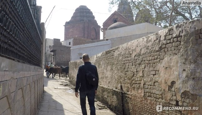 Идём в Храм Маданамоханы