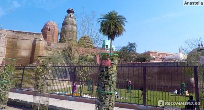 Вид на Храм Маданамоханы с дороги