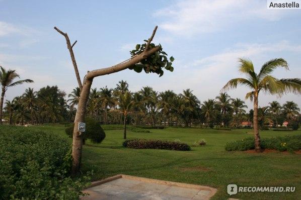 "Душ. Отель ""The Leela"" Goa 5* India"