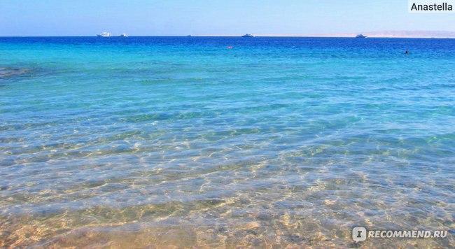 Египет. Красное море.
