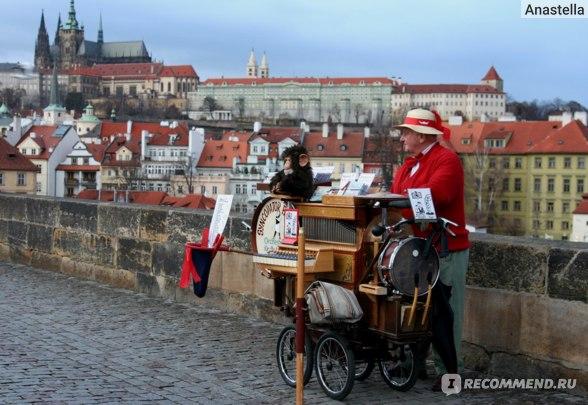 Шарманщик на Карловом Мосту на фоне Градчан. Прага.