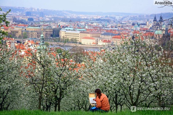 Художница. Прага.