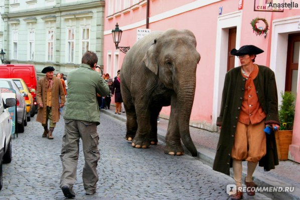 Утренняя прогулка по Кампе, Прага.