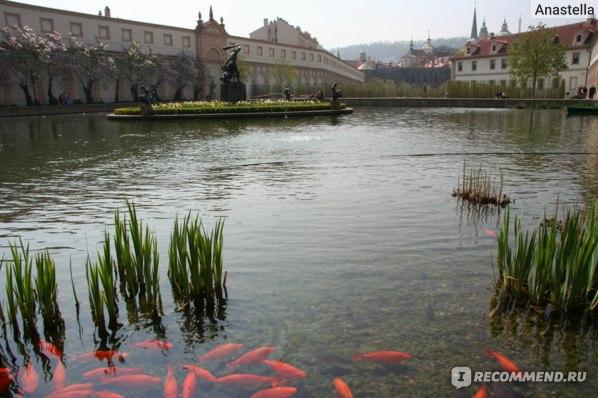 Вальдштейнский сад. Прага.