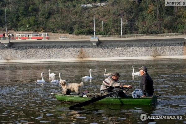 Трое в лодке:)) Прага. Река Влтава.