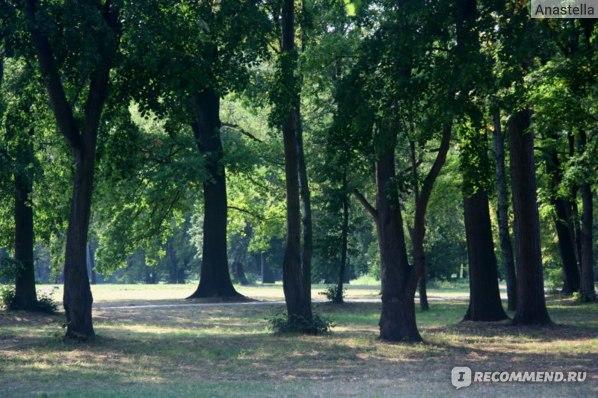 Знаменитый парк Стромовка в Праге.