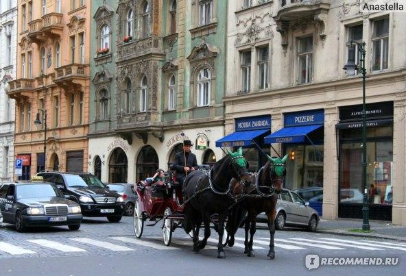 Прогулка на коняшках. Прага.