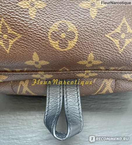 Рюкзак Louis Vuitton Palm Springs PM (M44871) фото