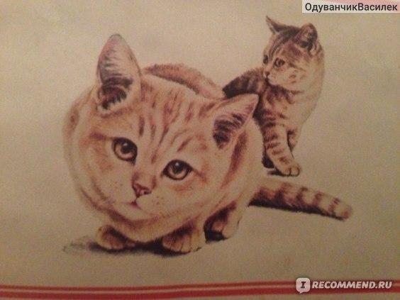 Happy cat Консервы для кошек фото