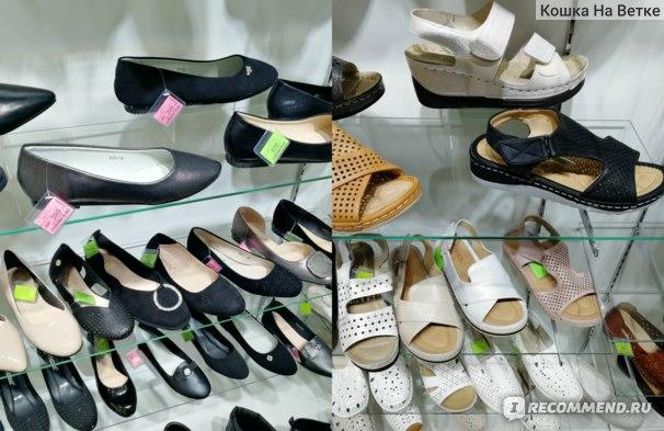 Обувные магазины Ривьера Липецк