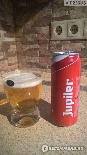 Пиво Jupiler Pils фото