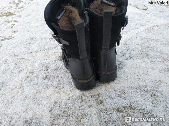 Полусапоги женские зимние Alessio Nesca арт. 25307100 фото