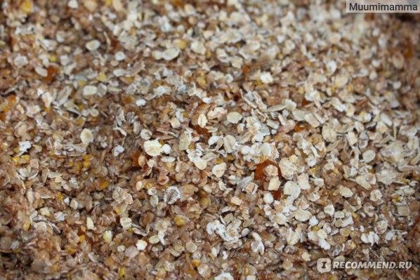 Овсянка с цукатами, кокосовым маслом и семенами льна - рецепт пошаговый с фото
