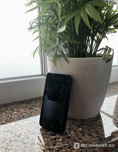 Смартфон Apple iPhone 4 фото