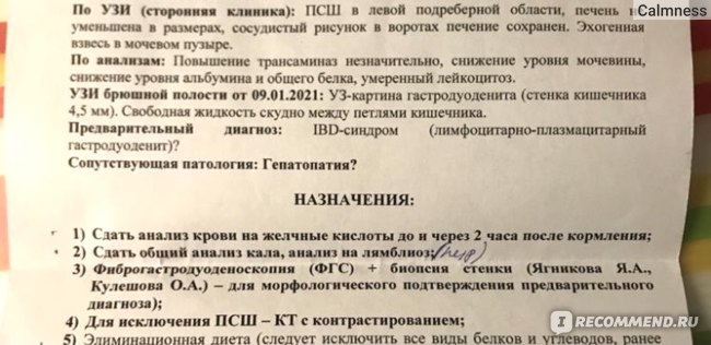 Услуги ветклиник  Гастроскопия животного фото