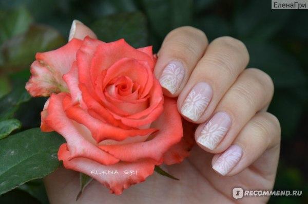 Пластина для стемпинга Oshine Beauty Stamping Nail Art, XL Plate A - Z Series фото