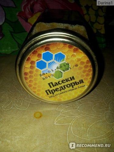 Мёд Пасеки Предгорья Натуральный цветочный Алтай Медоносный фото
