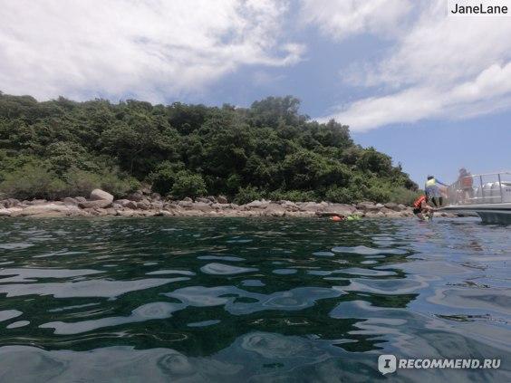 Экскурсия на острова Тао и Нанг Юань. Таиланд, о. Самуи фото