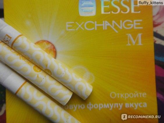 Сигареты esse exchange m купить где купить дешевле сигареты в тюмени купить