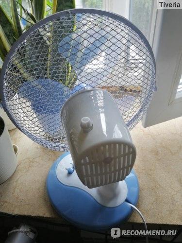 Вентилятор SCARLETT Настольный SC-DF111S06 фото