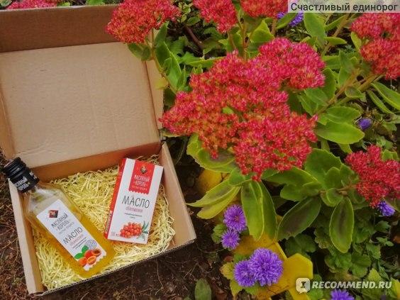 Абрикосовое масло Масляный Король (масло абрикосовых косточек) фото