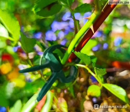 фикс прайс подвязка для растений