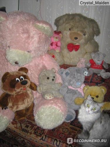 Фотосессия с медведями))