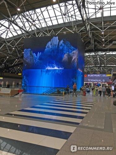Шереметьево, терминал Б
