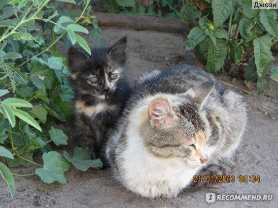 мама с сыном))