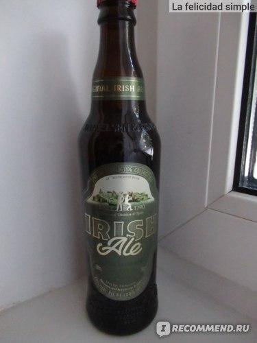 Пиво Балаковский Пивовар Ирландский эль фото