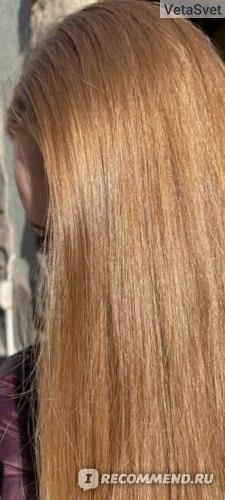 Твердый шампунь Garnier Ultimate Blends Delicate Oat Softening Shampoo Bar for Sensitive Scalp and Fragile Hair (Botanic Therapy успокаивающий с овсяным молоком)