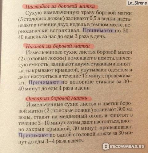 Руски чајеви, чага, бороваја матка