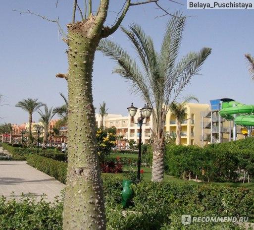 Titanic Beach Spa & Aqua Park 5*, Египет, Хургада фото