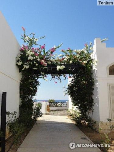 Coral Beach Rotana Resort Montazah 4*, Египет, Шарм-эль-Шейх фото