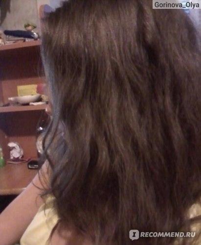 """Шампунь Natura Siberica для жирных волос """"Объём и баланс"""" ( кедровый стланик и арктическая малина ) фото"""