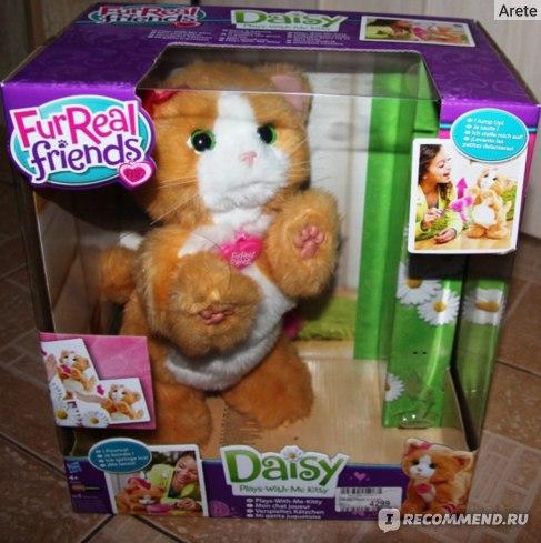 Hasbro FurReal friends игривый котенок Дейзи фото