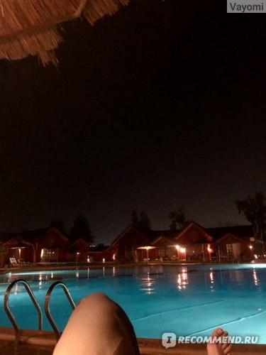 зацените, какое потрясающее фото ночью возле нашего бунгало