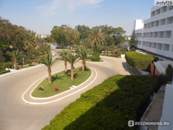 тропикана клаб тунис монастир отзывы 2019