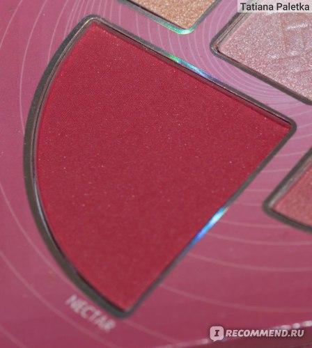 Палетка для макияжа лица De'lanci Maelstrom Highlighter & Blush фото