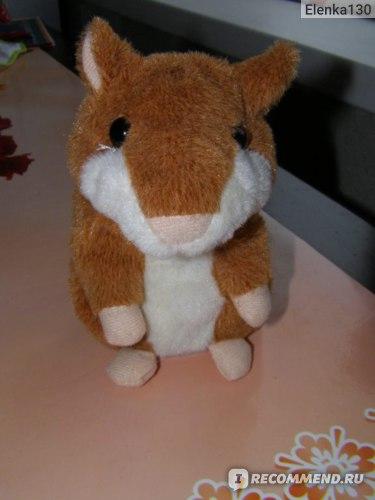 Woody O'Time Говорящий хомяк интерактивная игрушка фото