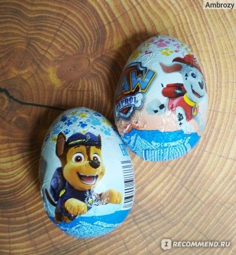 Шоколадное яйцо с сюрпризом Щенячий патруль  20г c 3лет ES-2-24 в непрозрачной упаковке фото