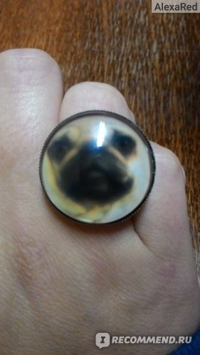 Кольцо Aliexpress Vintage glass ring cute animal round glass pugs dog bronze copper ring for women girl adjustable fashion gifts фото