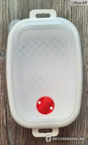 Ёмкость БытПласт Для холодильников и микроволновой печи 1.6л с клапаном. Артикул 4311689 фото