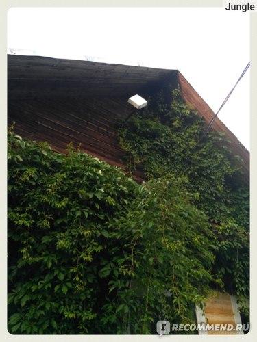 Внешний вид на крыше дома