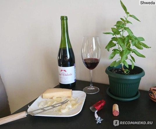 Вино Torres San Valentin и твердый сыр