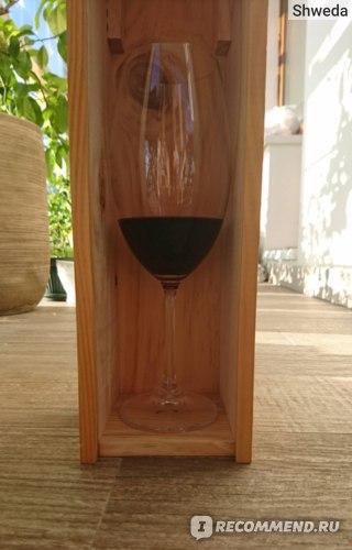 Бокал вина Torres San Valentin Garnacha